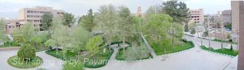Paoramic Photo SUT- IE